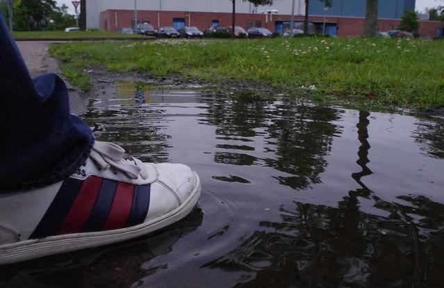 Rens zijn voet in het bange water