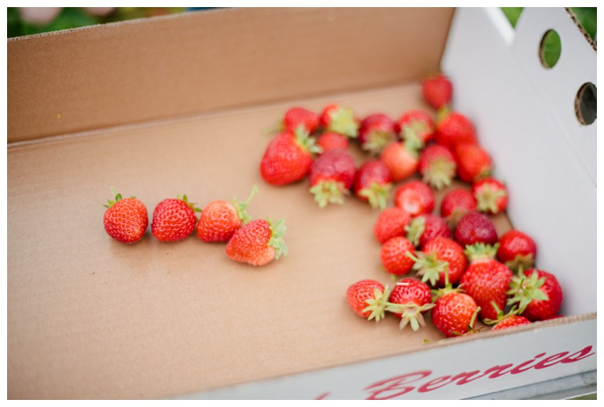 strawberries_003