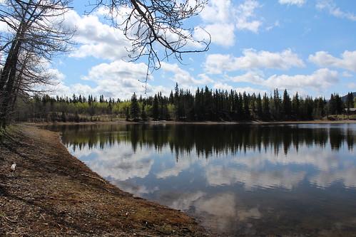 Sibbald Lake 045