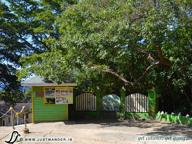 PIC: Arch's Iguana Park, Roatan, Honduras - Excursion from Caribbean Cruise