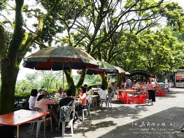 陽明山竹子湖餐廳美食杉木林 (1)