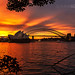 Sunset in Sydney by domingo_95