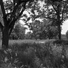 Project:1812 - The Battle of Tippecanoe by .:Axle:.