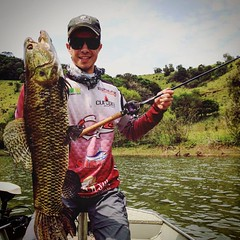 Leonardo Dallago com uma bela traíra fisgada no Sul. As dentuças também são ferozes. #pescaamadora #pesqueesolte #baitcast #fly #pescaesportiva #sportfishing #fishing #angler #anglerapproved #monsterfish #bigfish #bassmaniacs #catchandrelease #traira #san