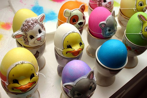 Eggs_017