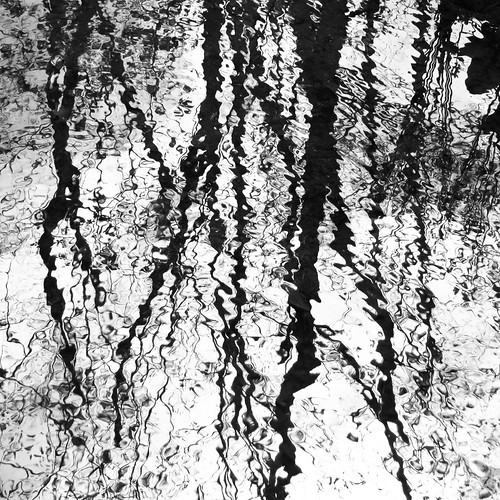 Reflection with a breeze monochrome