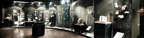 Museo de Paleontología (12)