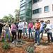 Geology Gateway Garden spring planting