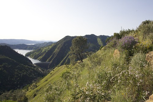 berryessa4-28-12--106 by DuncanSmith Photography