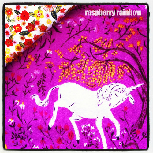 Raspberry rainbow my party planning creative space for Space unicorn fabric