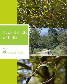 Essential oils of india