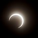 EclipseTokyo_17 by Sarah Sutter