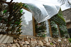 用廢棄酒瓶與黏土、羊糞搭建的溫室