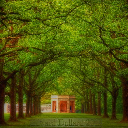 wood france monument forest southafrica memorial soldiers historical ww1 battlefield somme delvillewood colorphotoaward edwarddullardphotographykilkennyireland