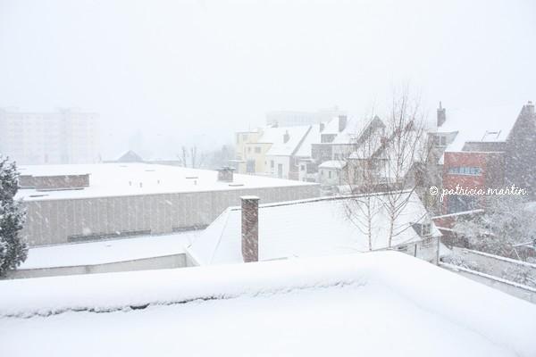 snowgent