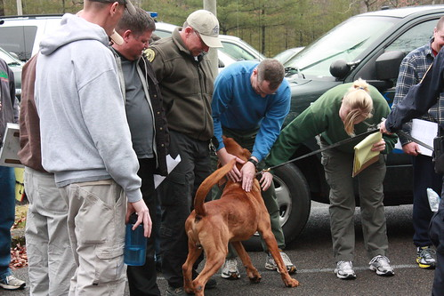 Virginia State Police Bloodhound, Moe, gets introduced to Virginia State Park's staff.