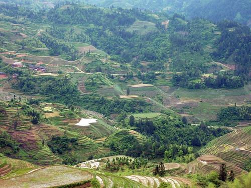 C-Guangxi-Dazhai-montee (26)