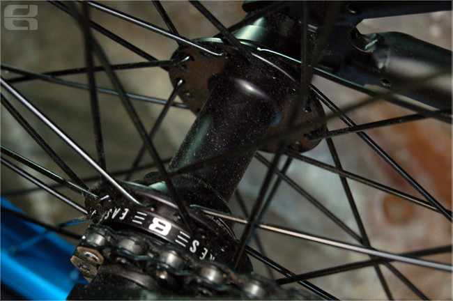Donga Bike Check Bike Rear Hub