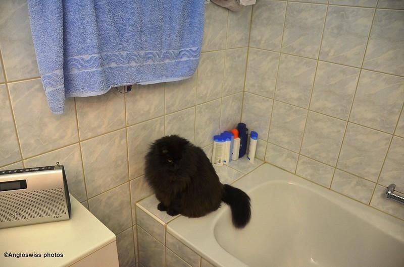 Nera in Bathroom