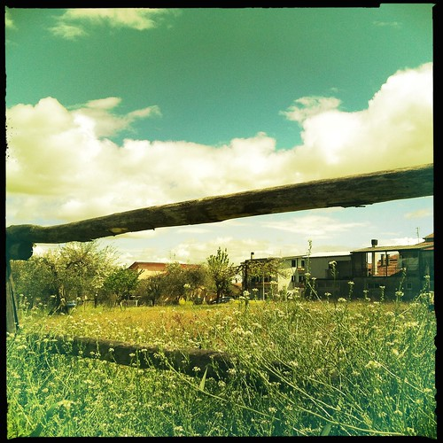 flickr hipstamatic
