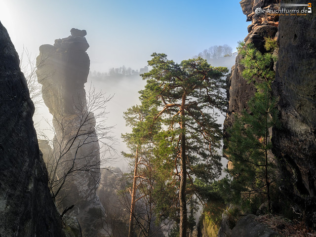 Wehlnadel in morning fog