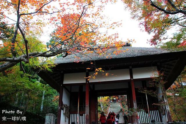嵐山旅遊景點-常寂光寺52