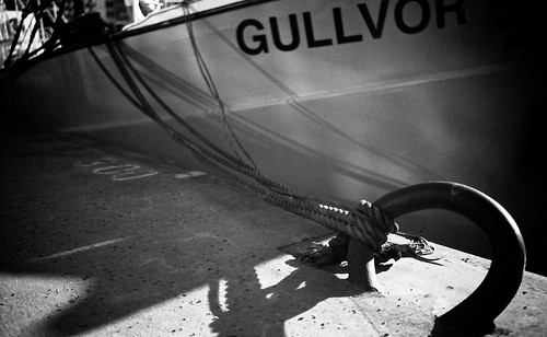Cut of Gullvor