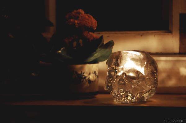 aliciasivert alicia sivertsson earth hour dark night window windowsill candle candles fire burning eld brinna brinnande ljus stearinljus värmeljus fönster fönsterbräda natt kväll mörkt mörker skull ludvig löfgren kosta boda dödskalle döskalle ljuslykta lykta flower flowers glass glas