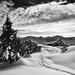 a snowshoes walk on winters blanket by gregor H