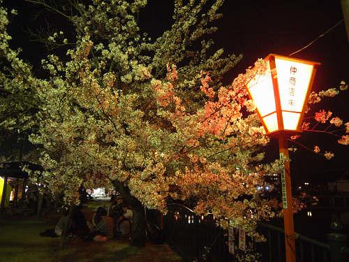 夜桜2012@大中公園(大和高田市)-03