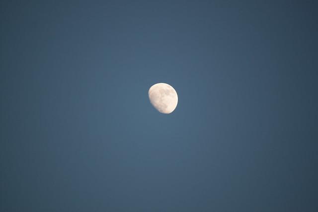 Mond im Mai (Original)