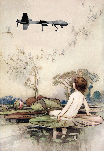 A Child's Garden of Drones