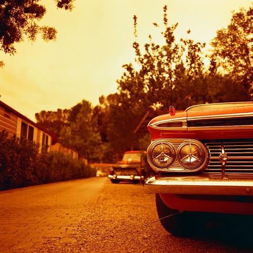 impala by BiERLOS