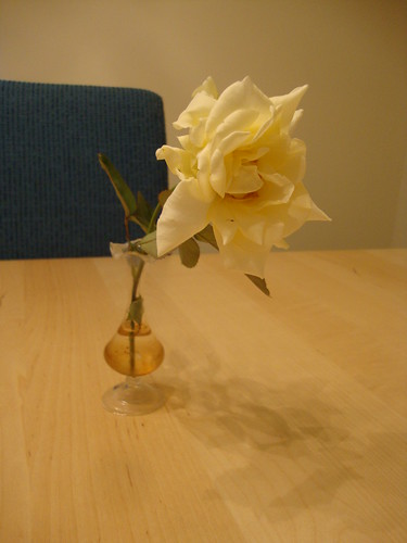 second rose of the year