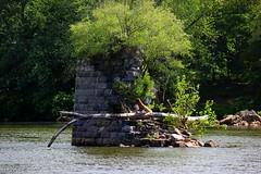 Old Bridge Ruins Nesting Site
