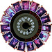 sixteen FPP followers by pho-Tony