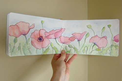 Poppies, Sketchbook Spread