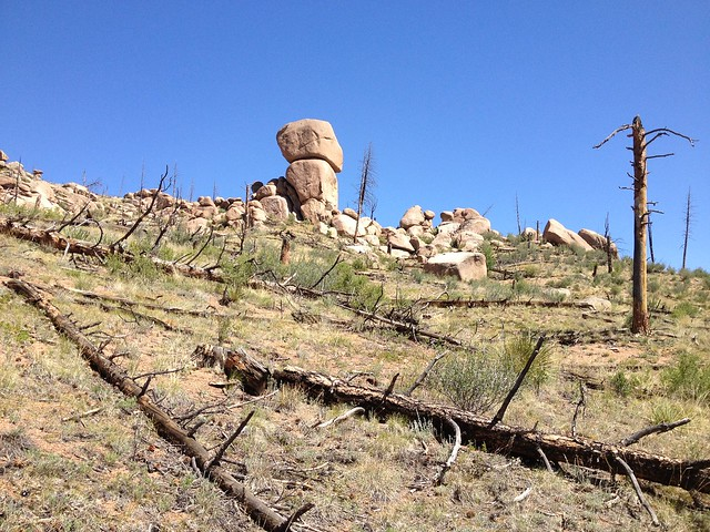 Rock Statue?