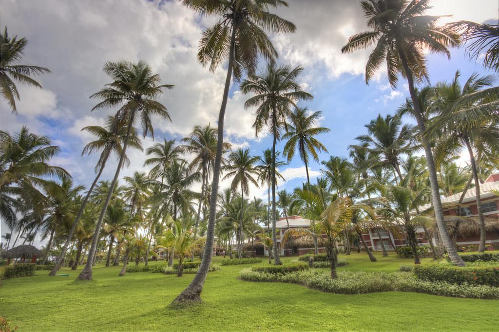 Resort Scenery