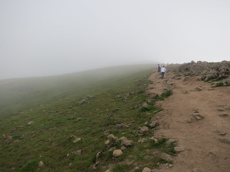 Hikers climbing up the steep trail to Mission Peak in the morning fog.