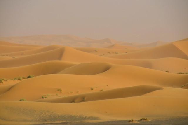 Mar de dunas de Erg Chebbi en tormenta de arena