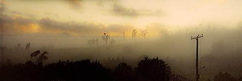 Sunrises in the Mist