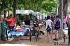 Feria animales adopción en Tomelloso