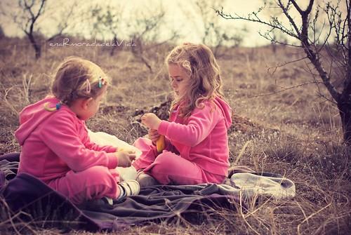 picnic en los almendros