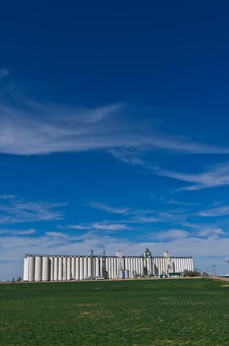 Under Blue Skies - Amherst, CO