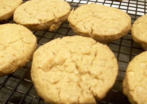 FreshPet_Cookies_312e
