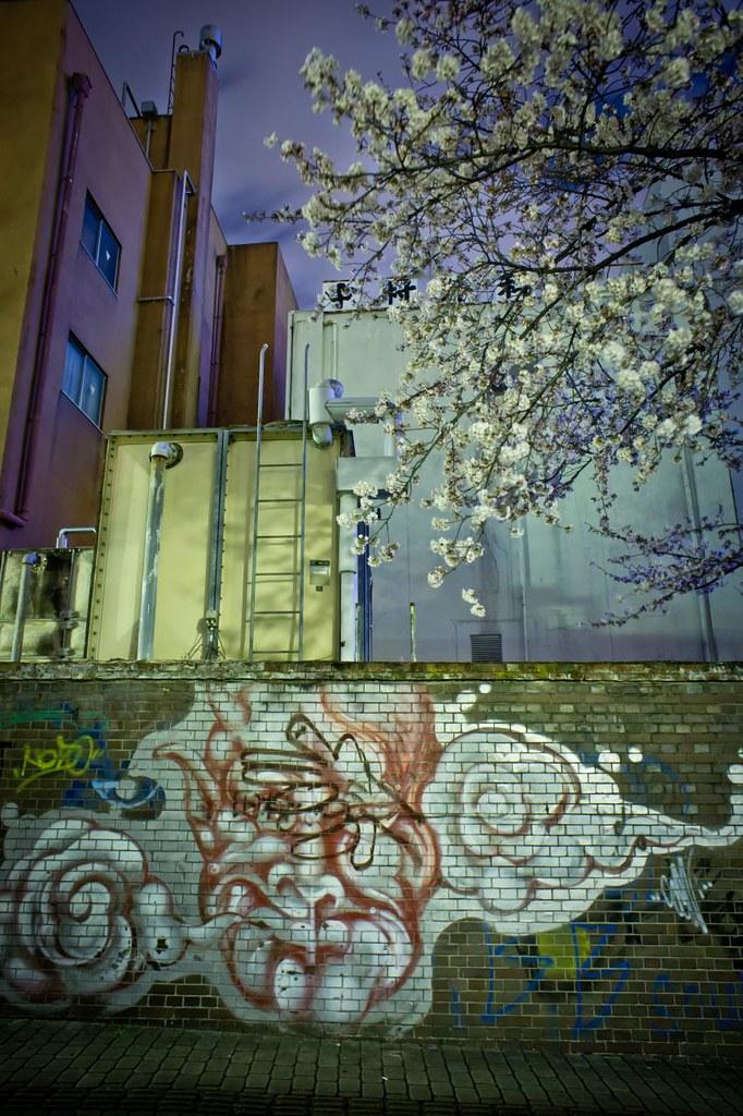 夜桜 2012