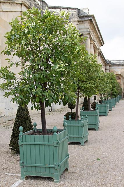 VersaillesGardens22