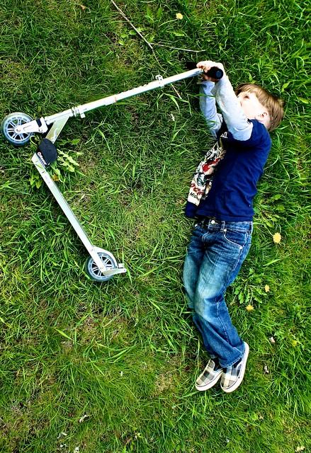 anteketborka.blogspot.com, fly