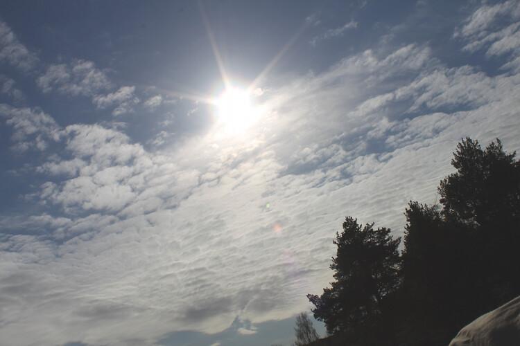 aurinkoinen